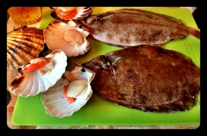 scallopsandsole